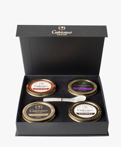 Calvisius Excellence Gift Box 4x1.0 oz.