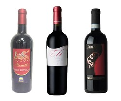 South of Italy Red Wines